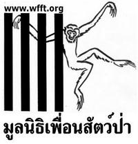 www.wfft.org