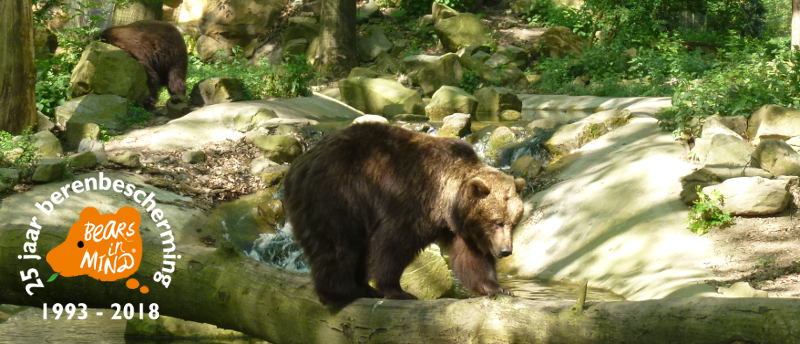 In 2018 bestaat Bears in Mind 25 jaar